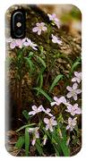 Wild Spring Beauty IPhone Case