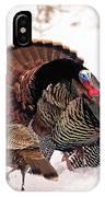 Wild Turkey Parade Print IPhone Case