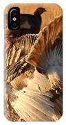 Wild Turkey Tom Following Hens IPhone Case