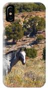 Wild Wyoming IPhone Case