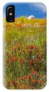 Wildflower Meadow With Indian Paintbrush IPhone Case