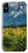 Wildflowers And Mount Moran IPhone Case