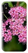 Wildflowers Come In Many Sizes IPhone Case