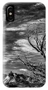 Wind Shaped Tree #2 - Patagonia IPhone Case
