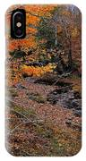Winding Brook IPhone Case