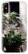 Window Plants IPhone Case