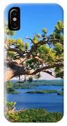 Windswept Pine On Rattlesnake Mountain IPhone Case