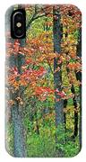 Windy Day Autumn Colors IPhone Case