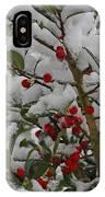 Winter Berries In Watercolor IPhone Case