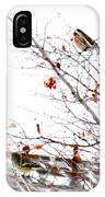 Winter Birds 1 IPhone Case