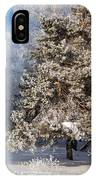 Winter Charm IPhone Case