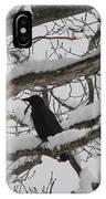 Winter Crow IPhone Case
