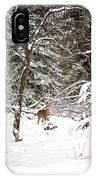 Winter Doe In The Upper Peninsula IPhone Case