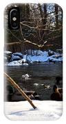 Winter Ducks IPhone Case