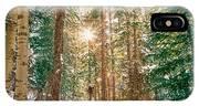 Winter Forest Sunshine IPhone Case