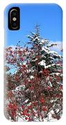 Winter Haven IPhone Case