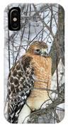 Winter Hawk IPhone Case