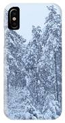 Winter In Maine 2017 IPhone Case