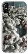 Winter In Va Beach IPhone Case