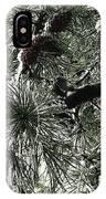 Winter Land  IPhone Case