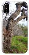 Winter Oak IPhone Case