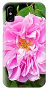 Winter Park Rose IPhone Case