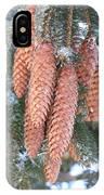Winter Pine Cones IPhone Case