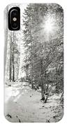 Winter Sunshine Forest Shades Of Gray IPhone Case