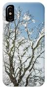 Winter Tree At Berry Summit IPhone Case