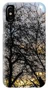 Winter Trees At Sunset IPhone Case