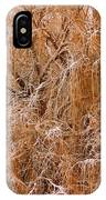 Winter Willow Branches IPhone Case