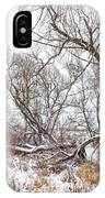 Winter Woods On A Stormy Day 2 IPhone Case