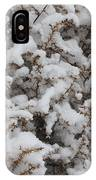 Winter's Contrast IPhone Case