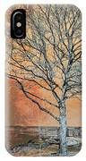 Winter's Dawn IPhone Case