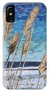 Wintertime On Lake Erie IPhone Case