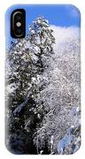 Wintry Morn IPhone Case