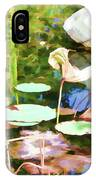 Withered Lotus In The Pond 2 IPhone Case