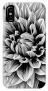 Wonderful Graphic Dahlia IPhone Case