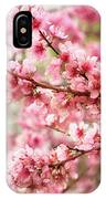 Wonderfully Delicate Pink Cherry Blossoms At Canberra's Floriade IPhone X Case