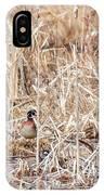 Wood Duck Mates 2018 IPhone Case