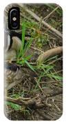 Wood Duck Pair IPhone Case