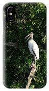 Wood Stork-out On A Limb IPhone Case
