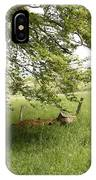 Woodland Walk By IPhone Case