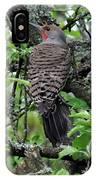 Woodpecker In The Apple Tree IPhone Case