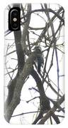 Woodpecker In The Forest IPhone Case