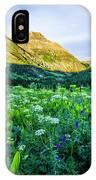 Yankee Boy Basin Flowers IPhone Case