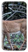 Yearling Fawn IPhone Case