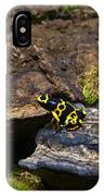 Yellow And Black Dart Frog IPhone Case