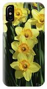 Yellow And Orange Daffodil  #2 IPhone Case
