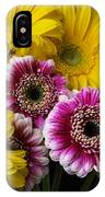 Yellow And Pink Gerbera Daisies IPhone Case